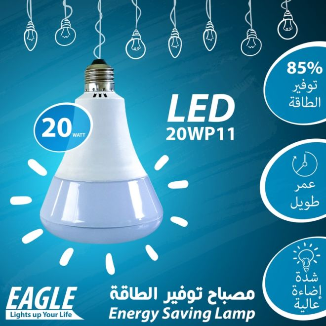 01 EAGLE LAMP 20WP11
