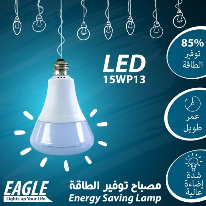 03 EAGLE LAMP 15WP13