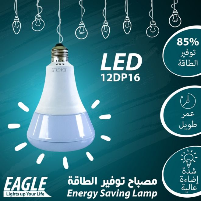 05 EAGLE LAMP 12DP16