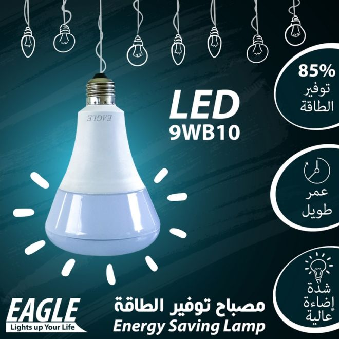 08 EAGLE LAMP 9WB10