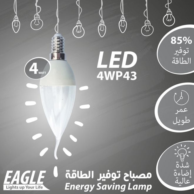 09 EAGLE LAMP 4WP43