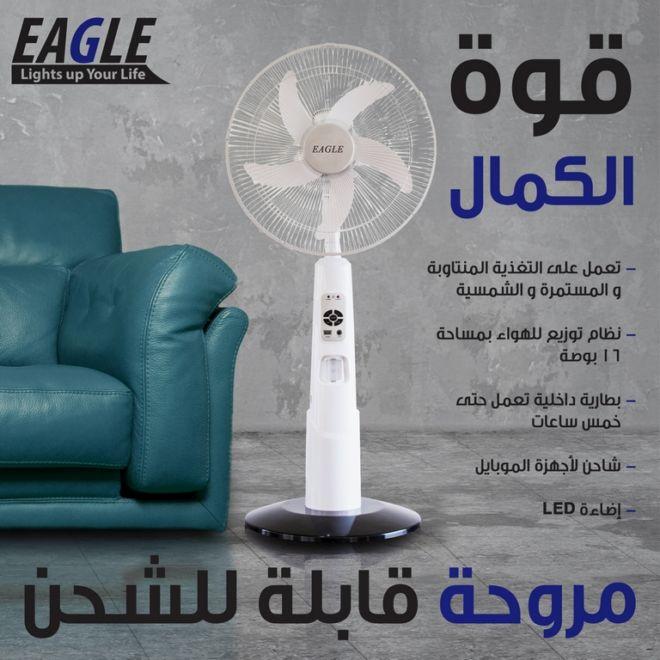 EAGLE FAN -2